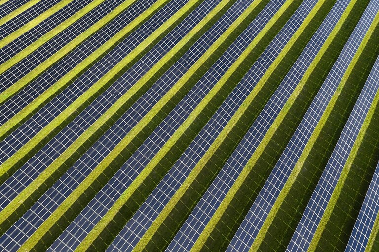 Rows of solar panels on grass.
